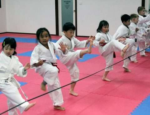 Samurai Shukokai Karate classes academy & club. Personal training, martial arts, self defence and weapons training, adults & kids.